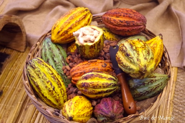 cabosse et fèves cacao