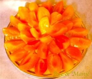 fond de tarte abricots
