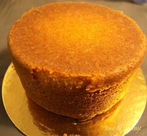 vanillia sponge cake