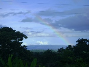 arrivée en Amazonie