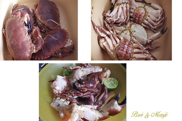crabes tourteau